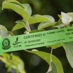 etiquette-verte-certifruit-rgf-1