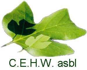 Logo CEHW