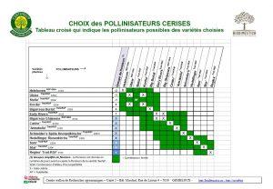 Choix pollinisateurs Cerises 2017